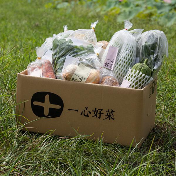 一心好菜中箱(10斤)