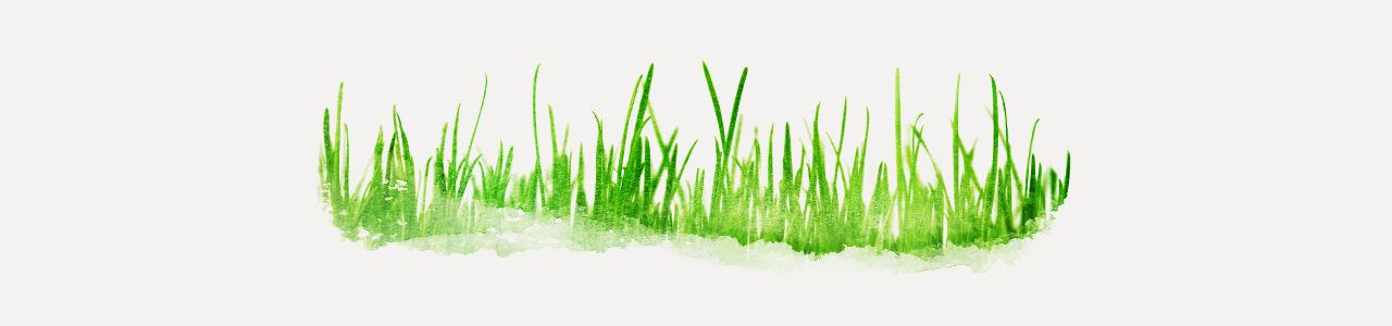 與草共生」的生態農法,把雜草當作農人的好幫手!