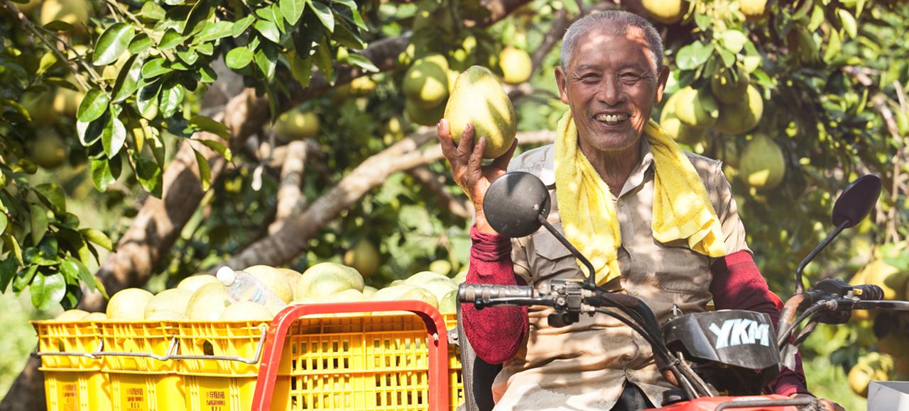 張忠志種出的文旦、白柚、柳丁、桶柑、檸檬、火龍果顆顆碩大漂亮,還沒上市就快被訂光